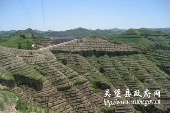 张家山现代园区-吴堡县人民政府图片