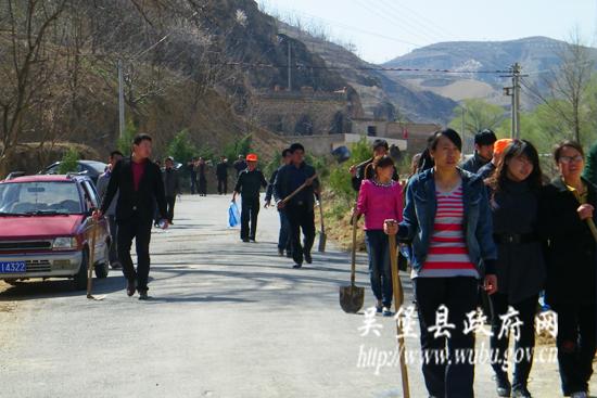 张家山镇积极开展植树绿化道路活动(图)-吴堡县人民图片